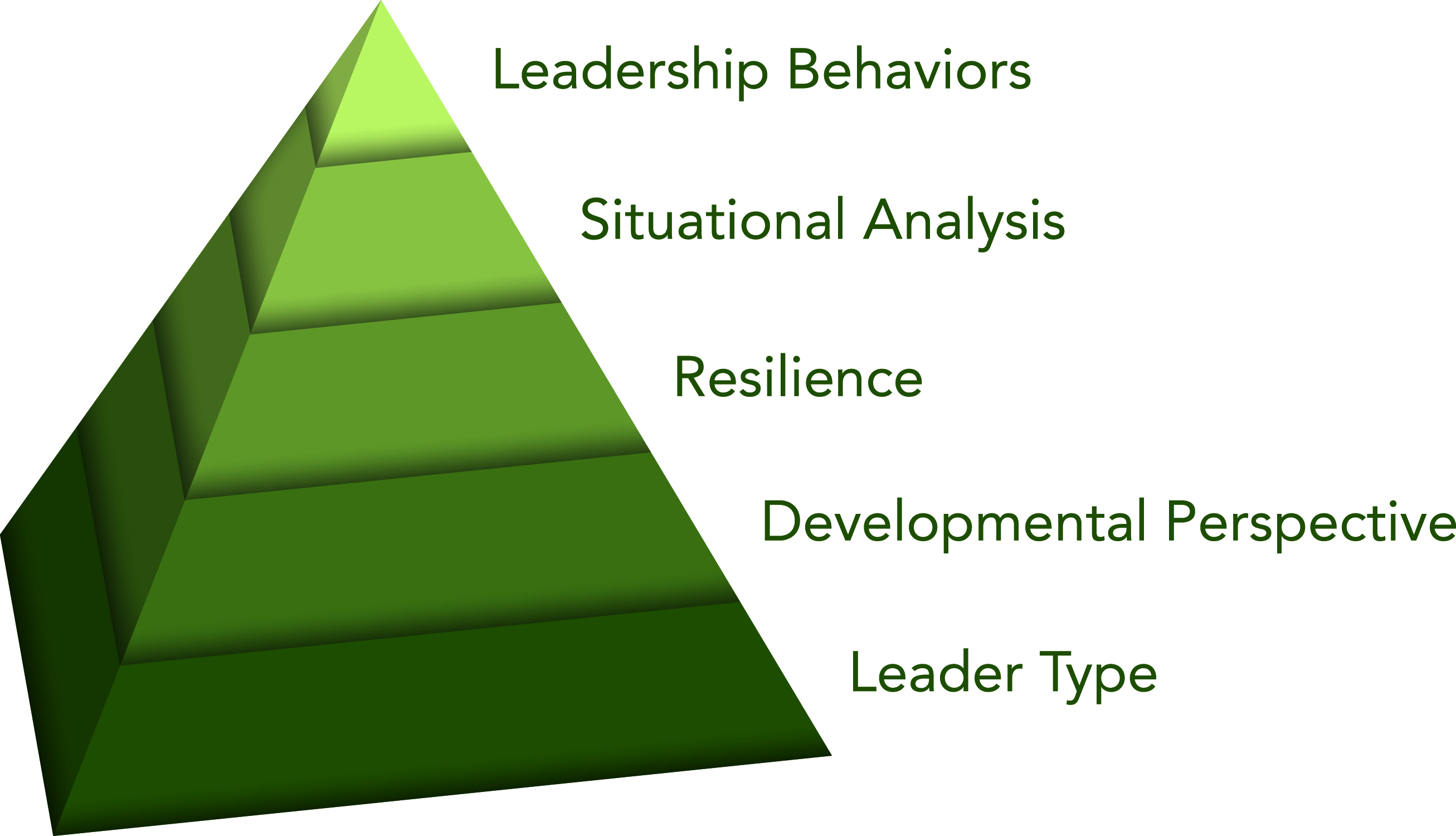 Innovative Leadership 5 Key Elements