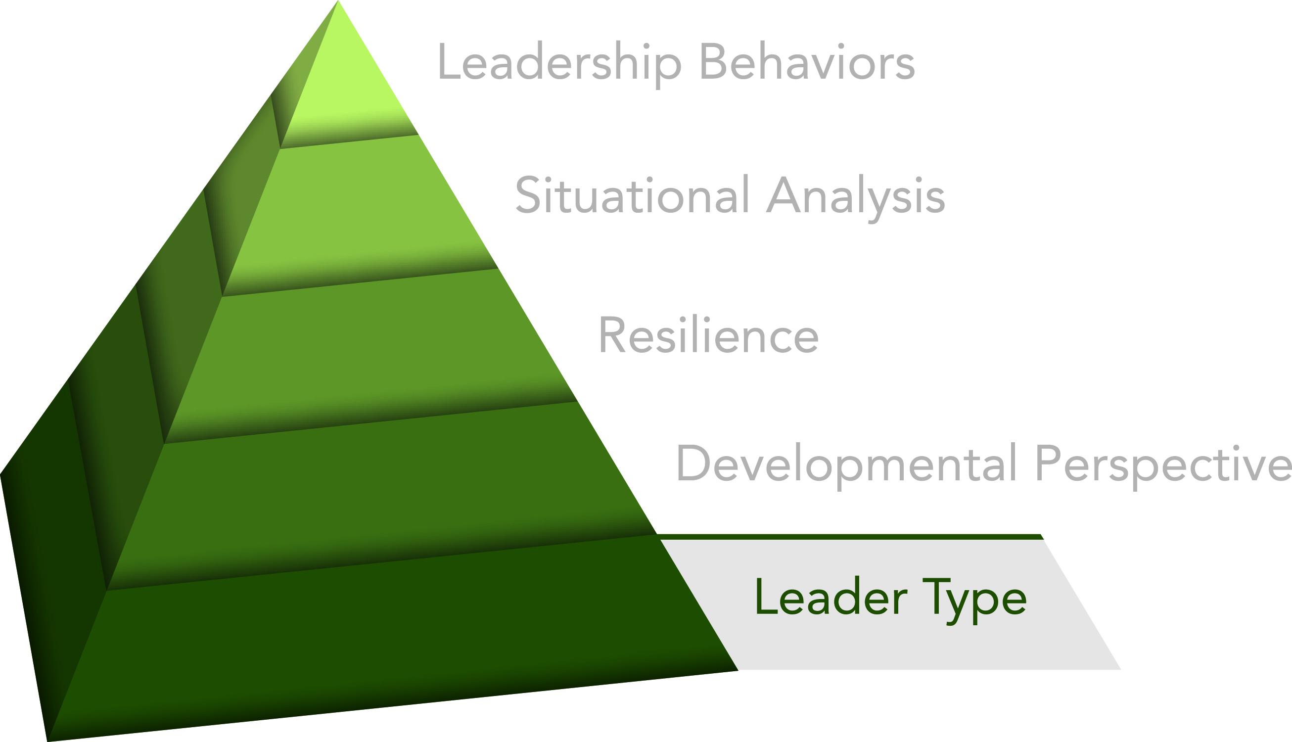 Innovative Leader Pyramid Leader Type