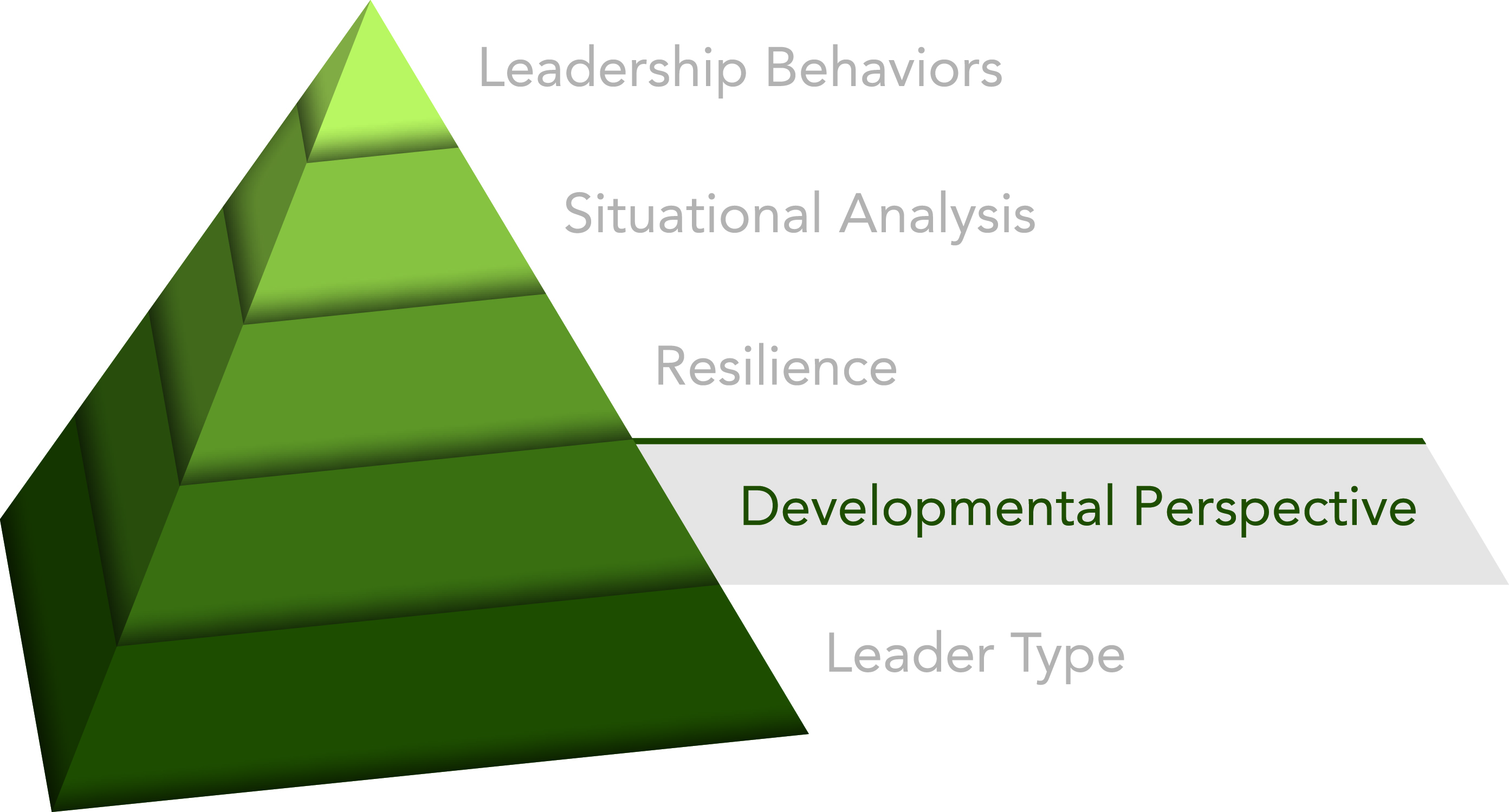 Innovative Leadership Developmental Perspectives