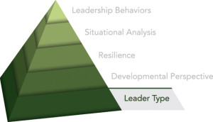 Innovative Leadership Leader Type