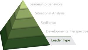 Innovative Leadership Leader Type