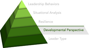 Innovative Leadership - Developmental perspective