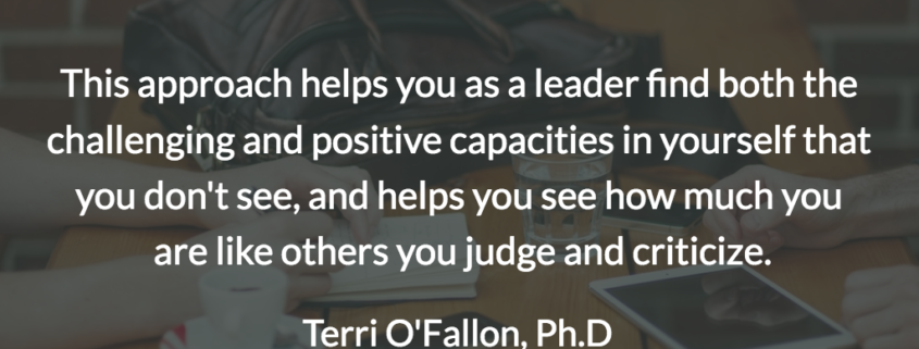 Level 5 Strategist Leadership for Complex Adaptive Collectives